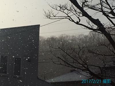 snow0362.JPG