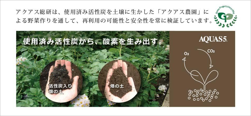 greenproject.jpg